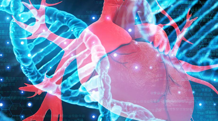你对肝脏了解多少?医学说球帝直播app下载iOS制作中